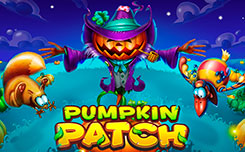 Play for free Pumpkin Patch