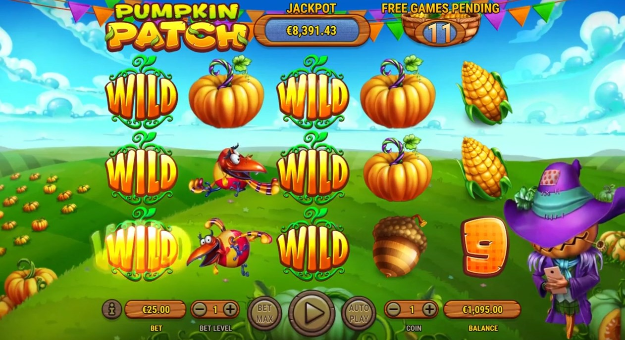 Play without registration Pumpkin Patch