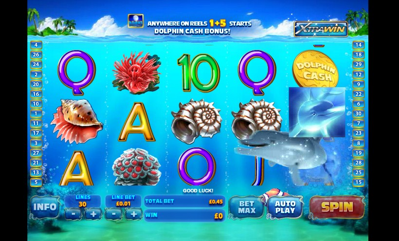 dolphin cash slot machine