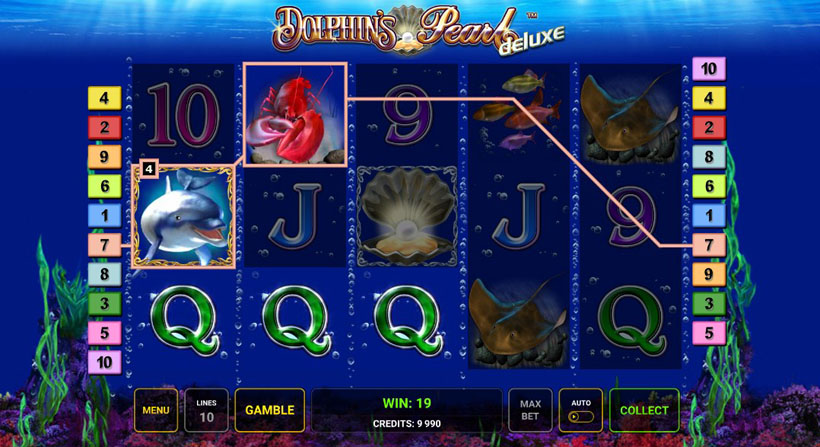 dolphin themed slots